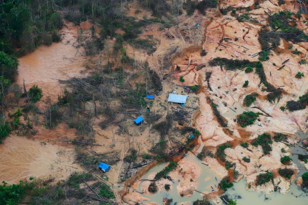 Invasão do território por não indígenas vem desde a década de 70, na ditadura militar — Foto: Chico Batata / Greenpeace